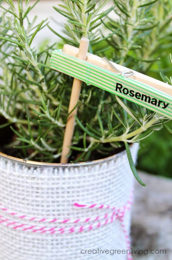 DIY herb markers clothespin