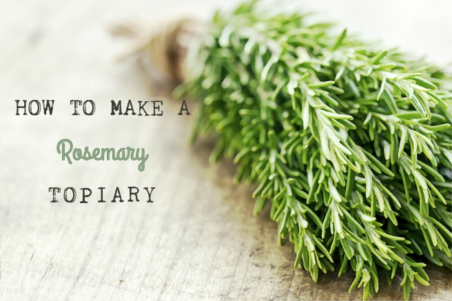 How to Make a Rosemary Topiary title image