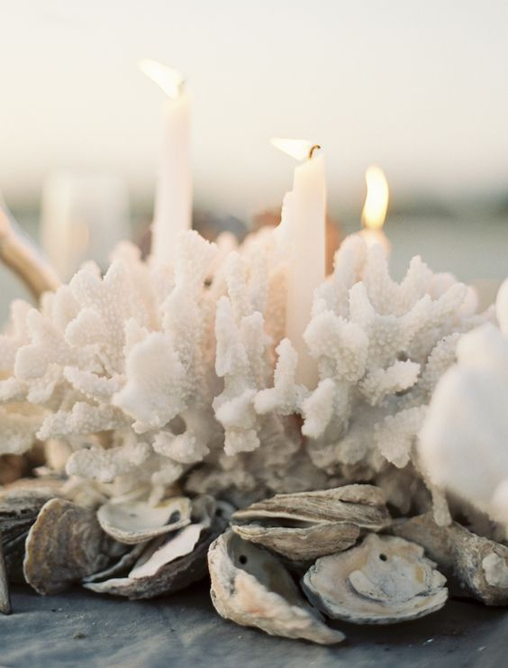 coral oystershell candles centerpiece