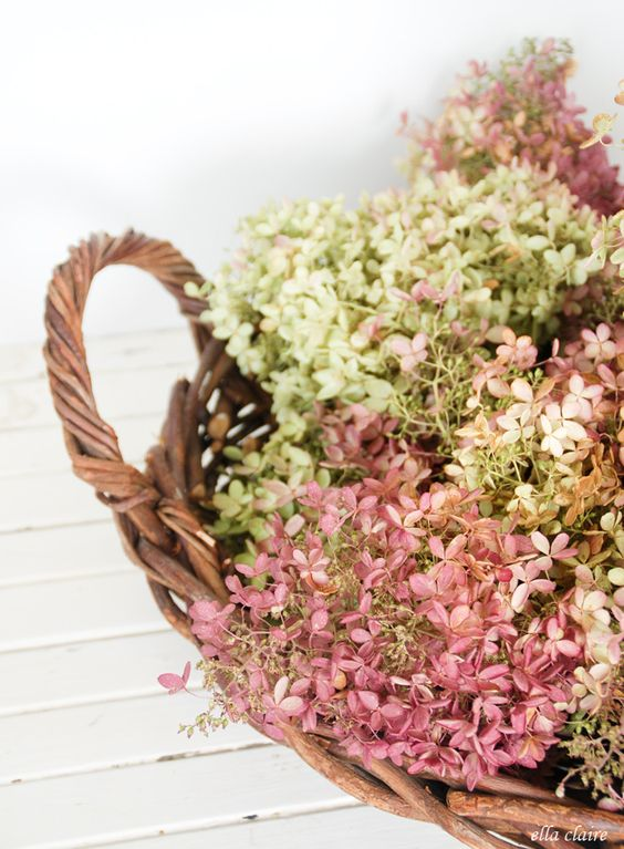 drying hydrangeas in basket