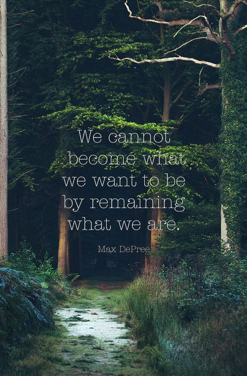 we cannot become what we want to be by remaining what we are max depree