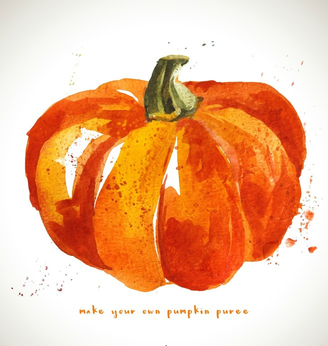 make your own pumpkin puree title image