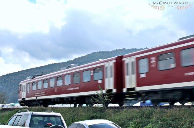 negreni fair and train