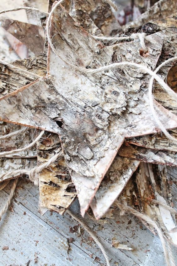 birch bark stars