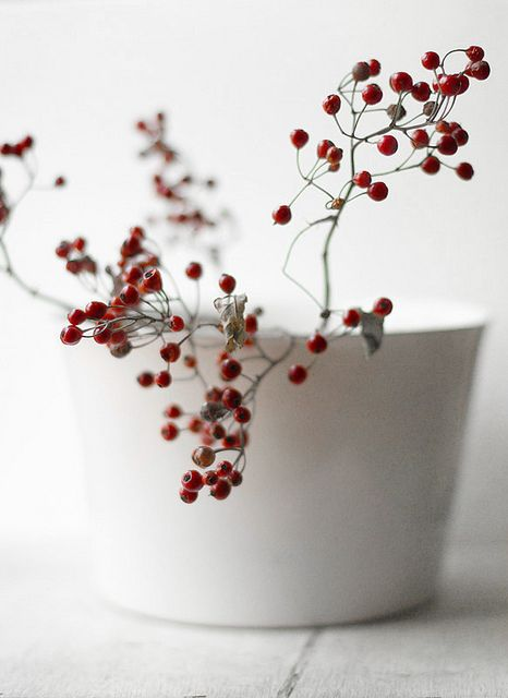 decor with red berries