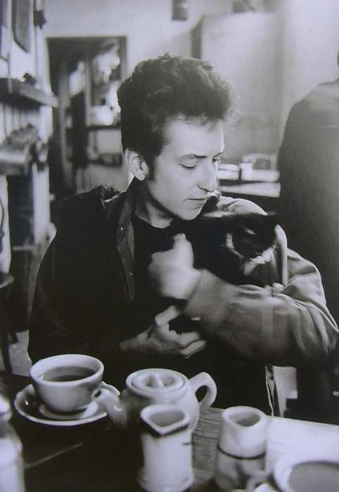 bob dylan with cat
