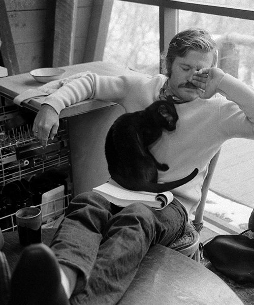 robert redford with cat
