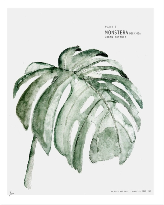 urban botanic art print monstera