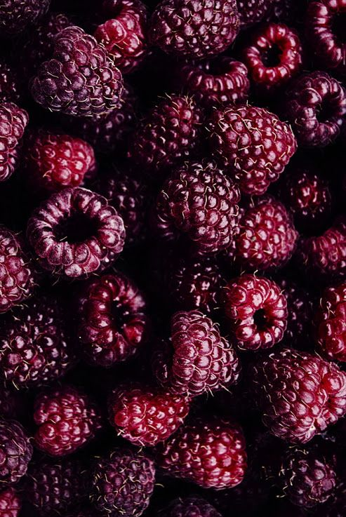 raspberries burgundy
